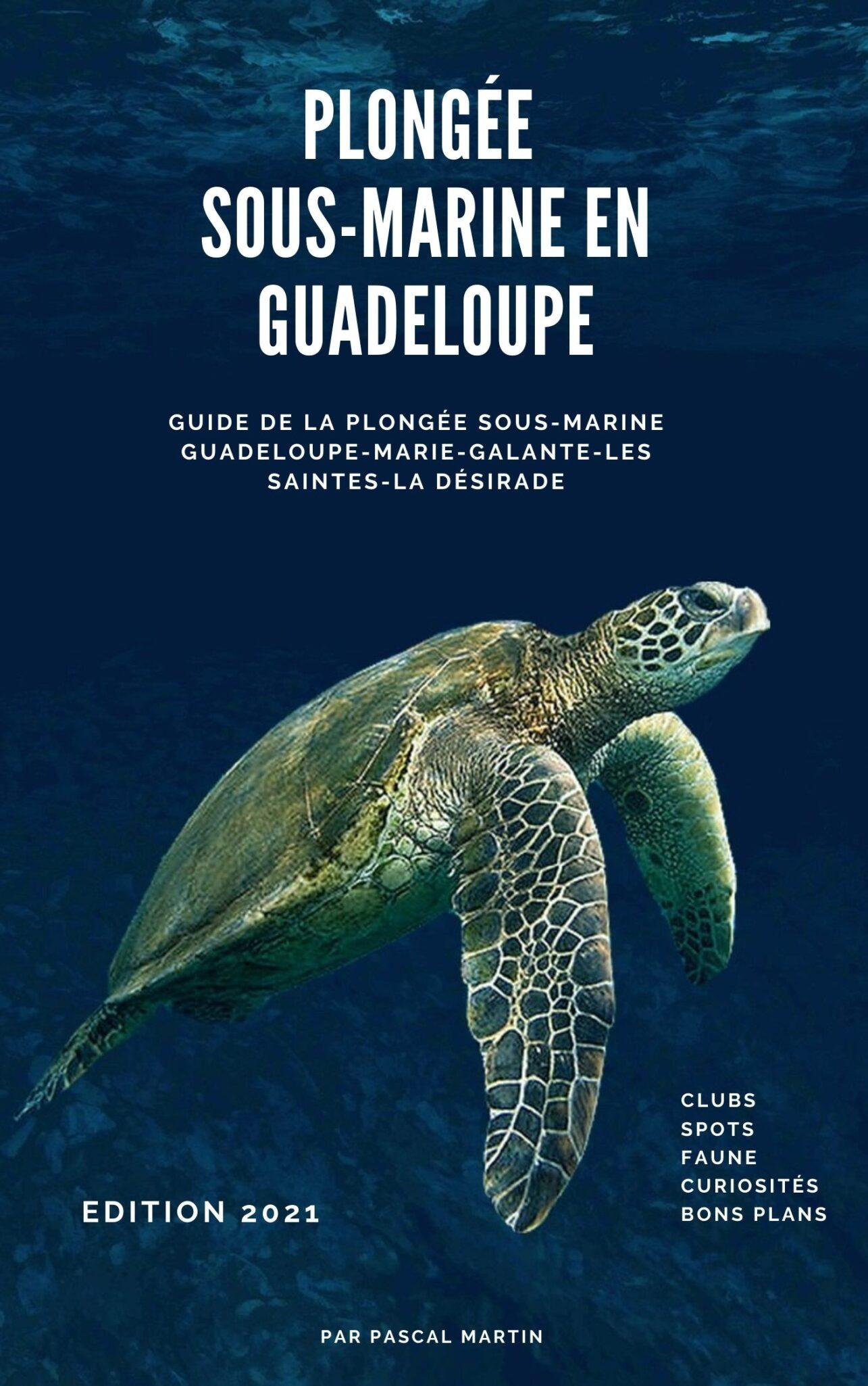 Plongee-sous-marine-en-Guadeloupe